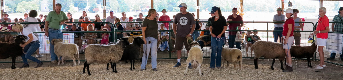 Links – Garden State Sheep Breeders
